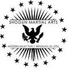 Shaun Hahn, Owner of Shogun Martial Arts